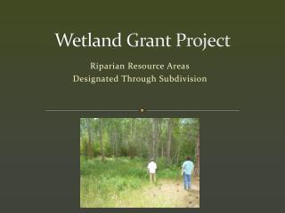 Wetland Grant Project