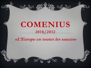 Comenius 2010/2012