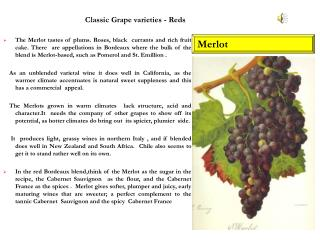 Classic Grape varieties - Reds
