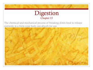 Digestion Chapter 13