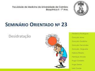 Seminário Orientado nº 23