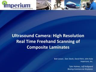 Ultrasound Camera: High Resolution Real Time Freehand Scanning of Composite Laminates