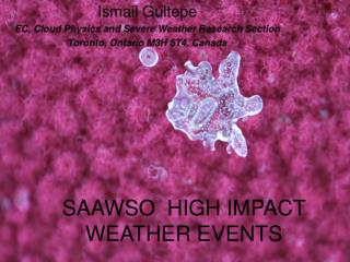SAAWSO  HIGH IMPACT WEATHER  EVENTS