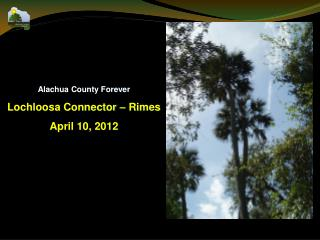 Alachua County Forever Lochloosa Connector – Rimes April 10, 2012