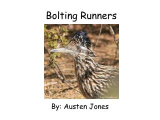 Bolting Runners