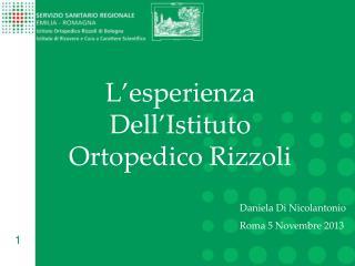 L'esperienza Dell'Istituto Ortopedico Rizzoli