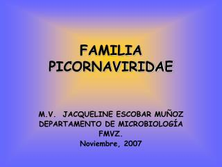 FAMILIA PICORNAVIRIDAE
