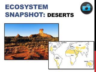 Ecosystem Snapshot: Deserts