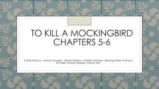 To kill a mockingbird chapters 5-6