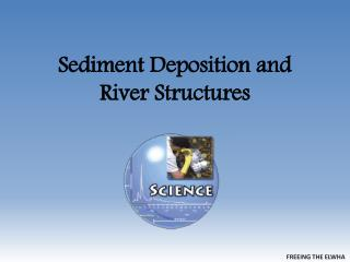 Sediment Deposition and River Structures