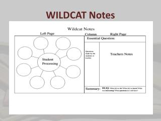 WILDCAT Notes
