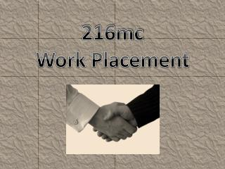 216mc Work Placement