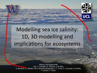 Modelling  sea ice  salinity:  1D , 3D  modelling  and  implications for  ecosystems