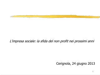 L'impresa sociale: la sfida del non profit nei prossimi anni