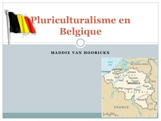 Pluriculturalisme  en  Belgique