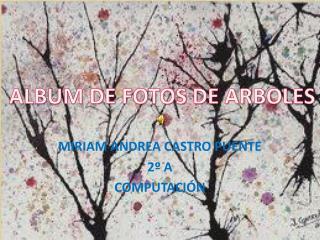 MIRIAM ANDREA CASTRO PUENTE 2º A COMPUTACIÓN