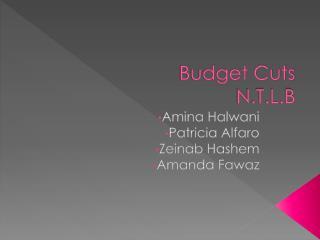 Budget Cuts N.T.L.B