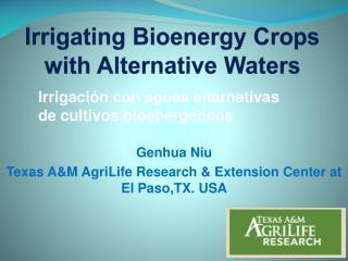 Irrigating Bioenergy Crops with Alternative Waters