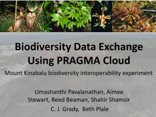 Biodiversity Data Exchange Using PRAGMA Cloud