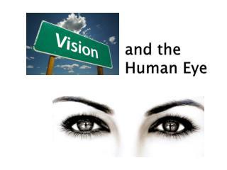 and the                                    Human Eye