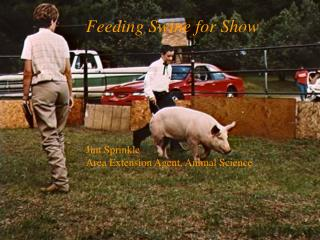 Feeding Swine for Show Jim Sprinkle Area Extension Agent, Animal Science
