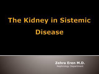 The Kidney  in  Sistemic Disease