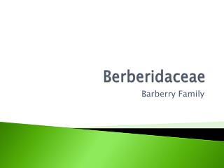 Berberidaceae
