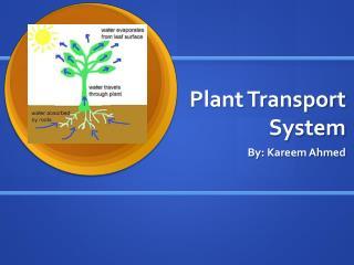 Plant Transport System