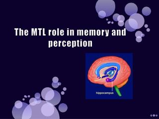 The MTL role in memory and perception
