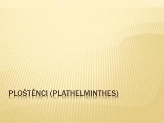 Ploštěnci ( plathelminthes )
