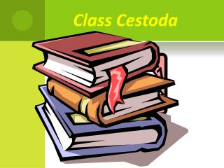 Class  Cestoda