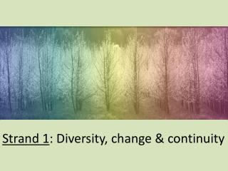 Strand 1 : Diversity, change & continuity