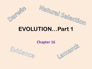 EVOLUTION…Part 1