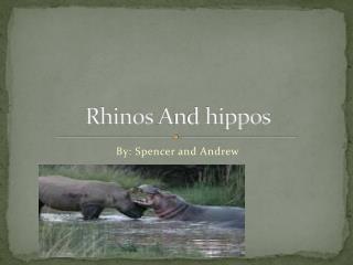 Rhinos  A nd hippos
