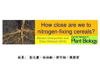 How close are we to nitrogen-fixing cereals?