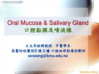 Oral Mucosa & Salivary Gland 口腔黏膜及唾液腺