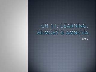 Ch 11: Learning, Memory & Amnesia