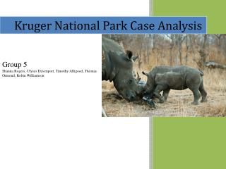 Kruger National Park Case Analysis
