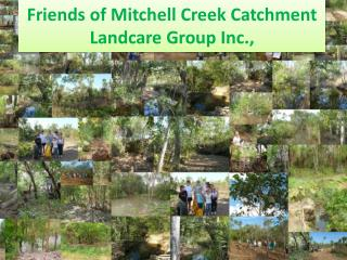 Friends of Mitchell Creek Catchment  Landcare  Group Inc.,
