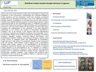 Multilevel analysis towards drought tolerance in Legumes