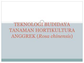 TEKNOLOGI BUDIDAYA TANAMAN HORTIKULTURA  ANGGREK ( Rosa  chinensis )