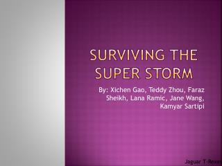 Surviving the Super Storm