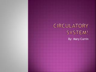 Circulatory System!