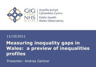 Measuring inequality gaps in Wales:  a preview of inequalities profiles