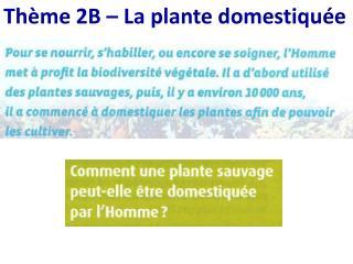 Thème 2B – La plante domestiquée