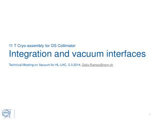 11 T Cryo-assembly for DS Collimator Integration and vacuum interfaces