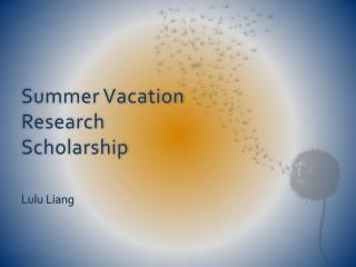 Summer Vacation Research Scholarship
