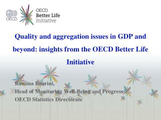 Quality and aggregation issues in GDP and beyond: insights from the OECD Better Life Initiative