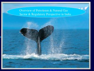 Overview of Petroleum  Natural Gas Sector  Regulatory Perspective in India