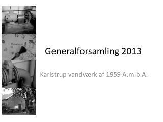 Generalforsamling 2013